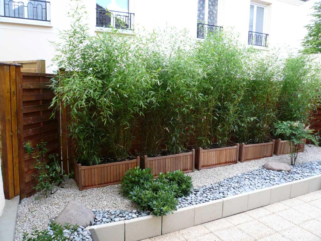 Haie En Bois De Bambou : Les bambous d'ornements en pots, en jardini?res ou en bacs, c'est